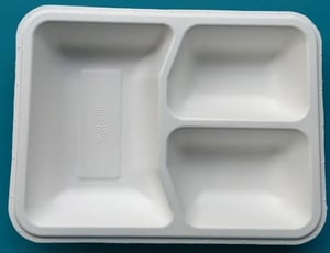 Biodegradable White Colored Compartment Trays