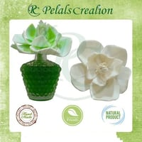 Reed Sola Flower Diffuser