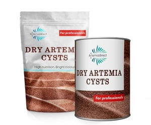 Highly Purity Dry Artemia Cysts