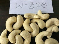 Processed Cashew Nuts Kernel
