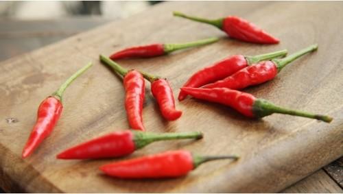 Vietnam Dried Red Chilli
