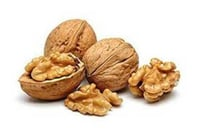 Export Quality Natural Dried Walnuts