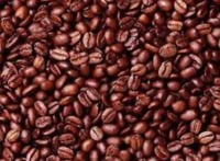 Special Cocoa Beans Seeds