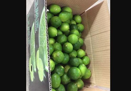 Fresh Frozen Green Lime
