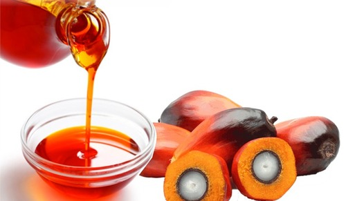 Palm Kernel Cooking Oil