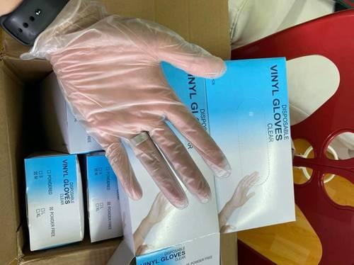 Clear Disposable Vinyl Gloves