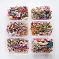 Fine Quality Dried Flowers