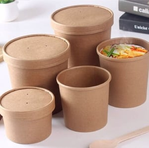Biodegradable Container