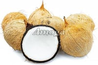 Healthy and Natural Fresh Husked Coconut