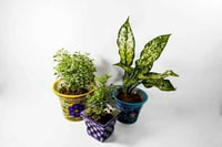 Handcrafted Blue Pottery Planters