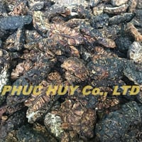 Natural Dried Noni Fruit