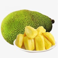 Healthy and Natural Fresh Jackfruit