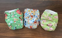 Blueberry Simplex All In One Organic Cloth Diapers