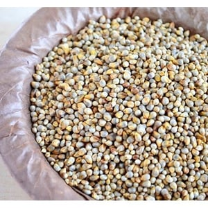 High In Protein Pearl Millet