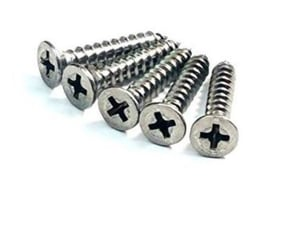 SS 304 Self Tapping Screw
