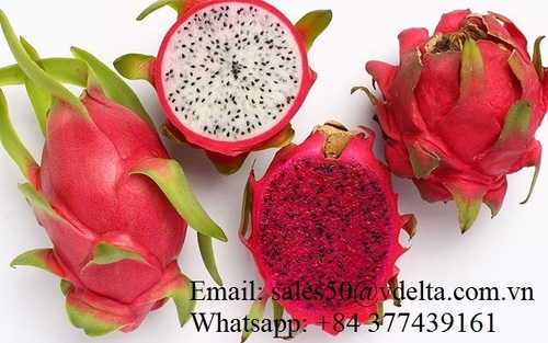 Natural Sweet Dragon Fruit