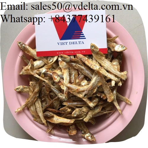 Dried Anchovy High Quality with Extremely Low Price