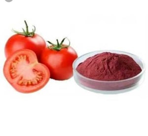 Tomato Extract Powder for Food