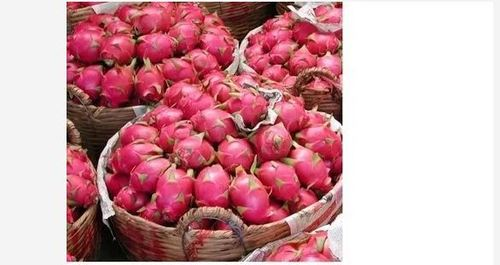 Organic Fresh Dragon Fruit