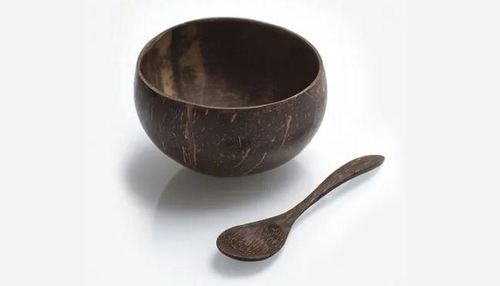 Nature Brown Coconut Shell Bowl