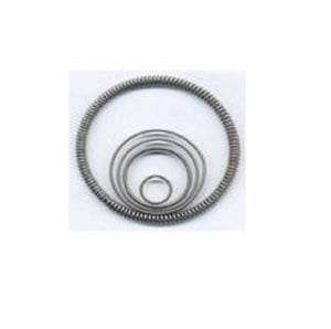 Corrosion Resistance Oil Seal Spring