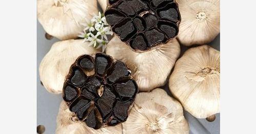 Black Color Fresh Garlic