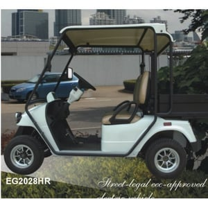 Street Electric Cart With 115kg Loading Weight