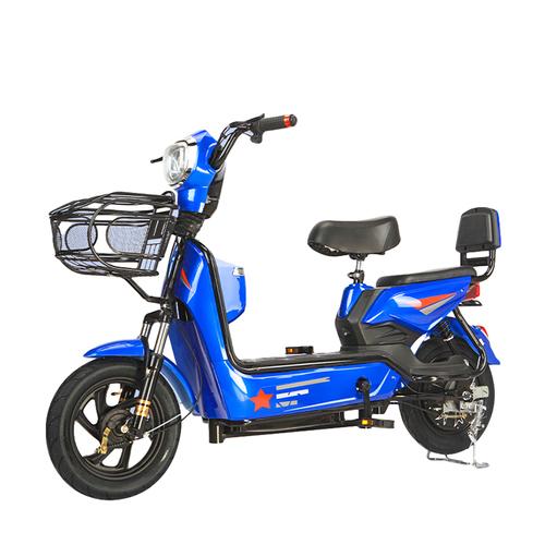 48V 12A Electric Bike 350W Electric Bicycle