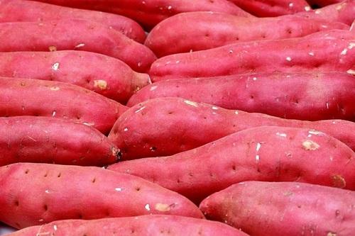 Farm Fresh Sweet Potatoes