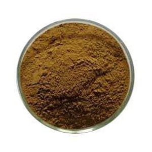 Coleus Forskohlii Root Extract 100% Natural Powder