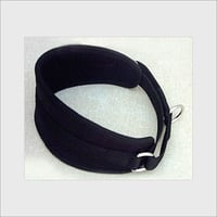 Dog Collars With Silver Buckles