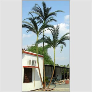 Preserved Green Palm Trees