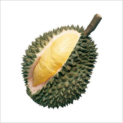 Common Sweet And Creamy Durian
