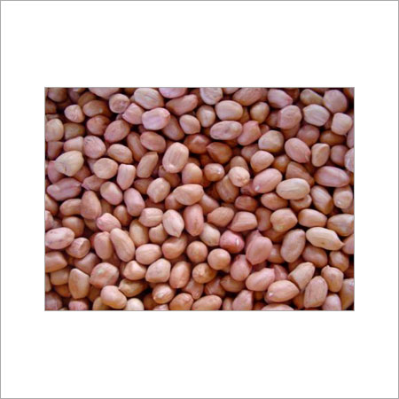 Rich Taste Hsuji Kernels Various Sizes Are Available Size