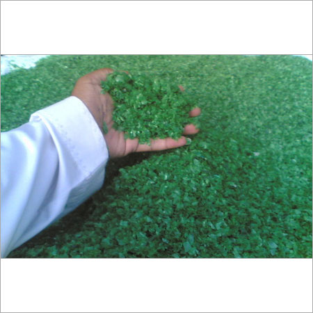 PET Green Flakes
