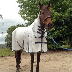 Economical Waterproof Horse Covers