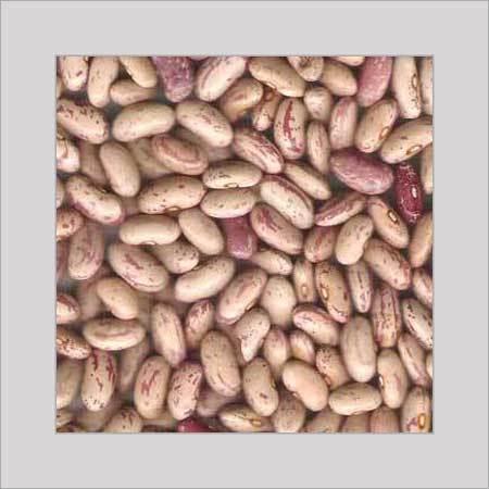 Kidney Bean