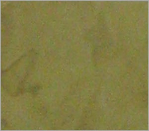 OLIVE OIL MARBLE FINISH PAINT