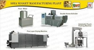 Soya Nugget Manufacturing Plant