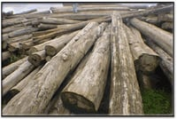 WOODEN TIMBER PLANK