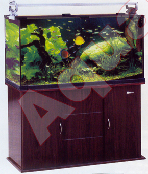Open Aquariums