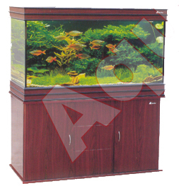 Square Type Aquariums