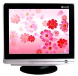 17 Inches CRT Flat Monitor