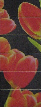 RED TULIP GLASS TILES