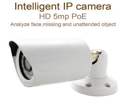 Face Detection Intellegent Ip Camera