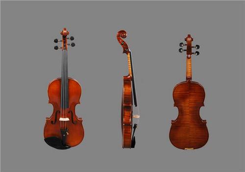 Professional Master Violin