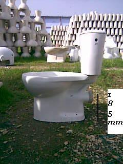 Italian Ewc 'S' Or 'P' With Cistern