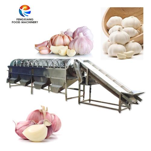 Og-505 Garlic Sorting Machine