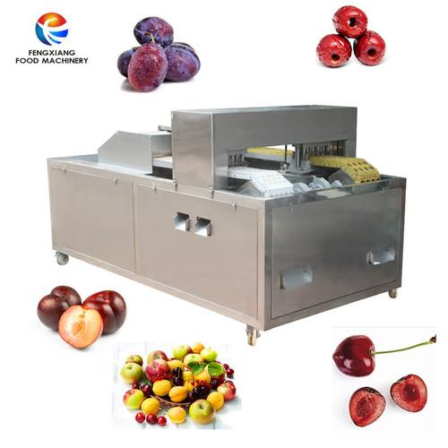 High Capacity Cherry Pitting Destoning And Plum Coring Machine