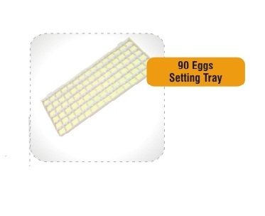 Egg Setting Tray